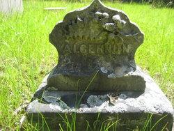 Algernon L Ames