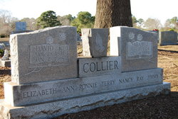 Sarah Jane <i>Ray</i> Collier