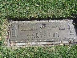 Dorothy M Hartmann