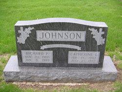 Catherine L. <i>Blomberg</i> Johnson