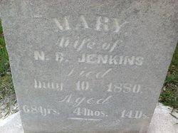 Mary <i>Folsom</i> Jenkins