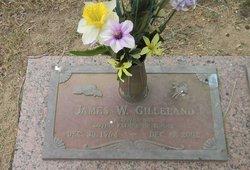 James Wesley Gilleland