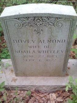Dovey <i>Almond</i> Whitley