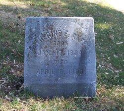 Catherine E Akers