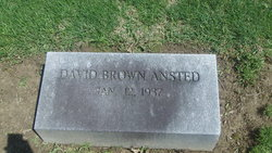 David Brown Ansted