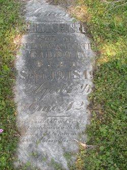 John Augustus Baldwin