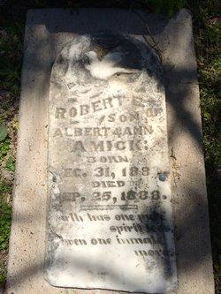 Robert E. Amick