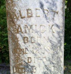 Albert Amick