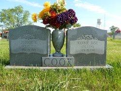 Nannie Jane <i>Cobb</i> Cook