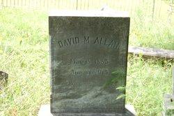 David M Allan