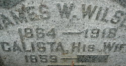 James William Wilson