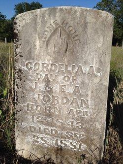 Joseph Jordan
