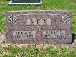 Viola Matilda <i>Strait</i> Rex