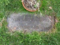 Ivan Brown Gray