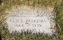 Alice Buikema