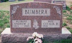 Andrew Bumbera
