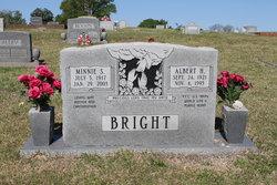 Albert Hammond Bright