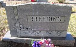 James Edward Breeding