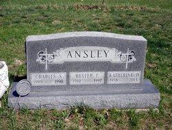 Hester Faye <i>Smith</i> Ansley