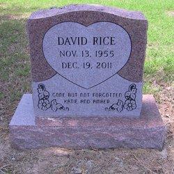 David Wayne rice