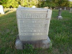Nannie M <i>Coleman</i> Barnes