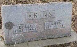 Delia Akins