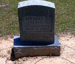 Thomas P Alred