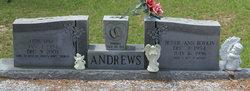 Bettie Ann <i>Boykin</i> Andrews