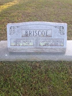 Caroline <i>Criswell</i> Briscoe