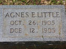 Agnes E. Little