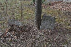 Samuel Goodwin Cemetery