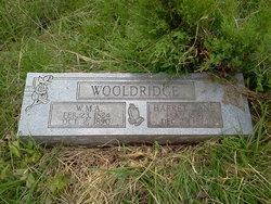 Harriett Jane <i>Thornberry</i> Wooldridge