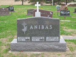 David L. Anibas