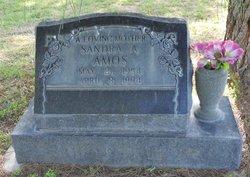 Sandra Ann <i>Martin</i> Amos
