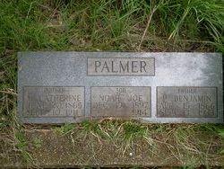 P. Benjamin Palmer