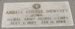 Amelia Louise <i>Huxsol</i> Newcity