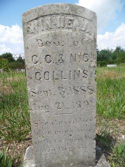 Winnie J. Collins