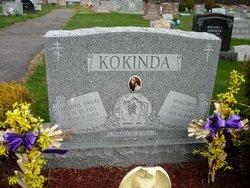 Michael W Kokinda
