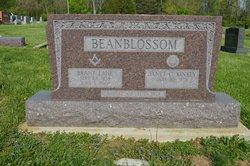 Brant L. Beanblossom