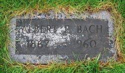 Albert E Bach