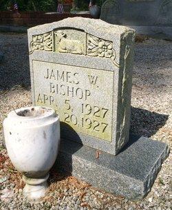 James Walter Bishop