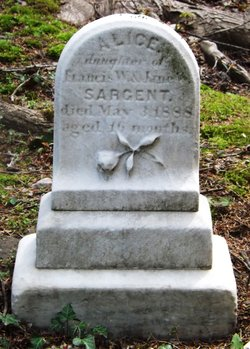 Alice Sargent