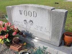 Robert Carroll Wood