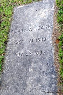 Mary Ann <i>McCollum</i> Leake
