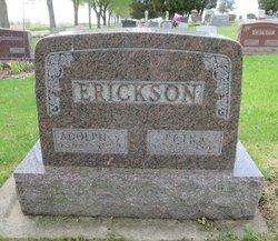 Petra <i>Lee</i> Erickson