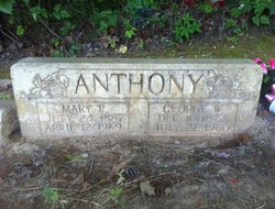 Mary Elizabeth Bettie <i>Easley</i> Anthony