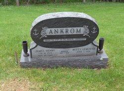 James Henry Ankrom