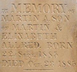 Martin A Allred