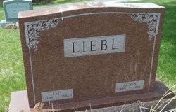 Agnes B <i>McNair</i> Liebl