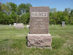 Eliza Jane <i>Anderson</i> Haines